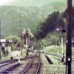 【1986年】国鉄越美南線の写真